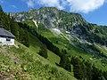Rochers de Naye Alp Chamossale.jpg