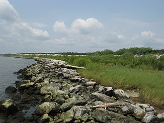 Gaillard Island - Shoreline of Gaillard Island