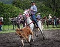 Rodeo Event Calf Roping 37.jpg