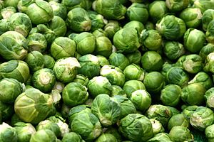 Deutsch: Rosenkohl English: Brussels sprouts