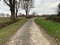 Route Teppes St Jean Veyle 3.jpg