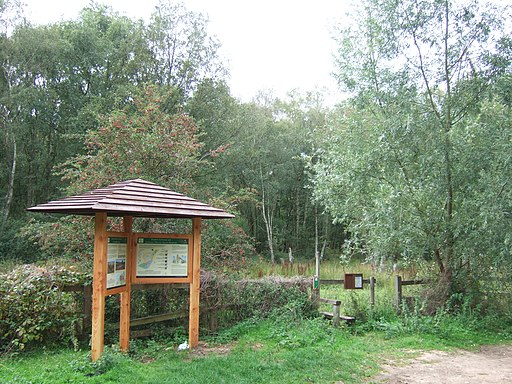 Roydon Common National Nature Reserve - geograph.org.uk - 2050531