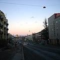 Rue-Lauttasaari.jpg