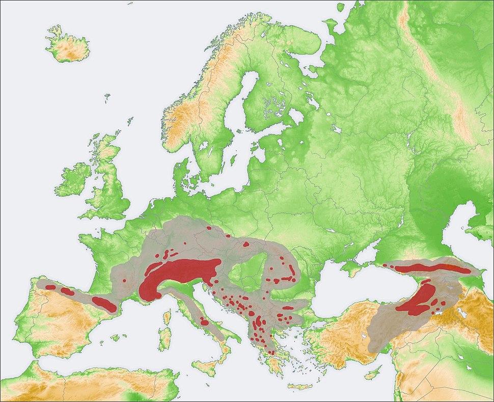 Rupicapra range