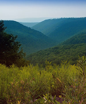 Beech Creek Township, Clinton County, Pennsylvania - A scenic vista from the Russell P. Letterman Wild Area within Sproul State Forest