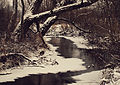 Rzeka Grabia w okolicy miejscowości Drzewociny.JPG