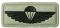 SANDF Air Supply Instructor badge embossed.png