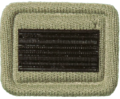 SANDF Rank Insignia Candidate Officer embossed badge.png