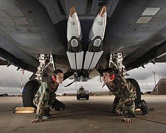 GBU-39 Small Diameter Bomb - 4 SDBs (training/ground handling variant) loaded on an F-15E Strike Eagle