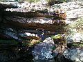 SIERRA LA VIGILANCIA - panoramio.jpg