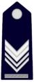 SMAGC.GendarmeriaPontificia.png