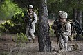 SPMAGTF-CR trains to rescue downed pilots 140926-M-PA636-077.jpg
