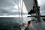 Sailing (1921240135).jpg