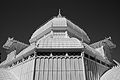 San Francisco Conservatory of Flowers-32.jpg