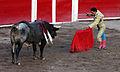 San marcos bullfight 11.jpg