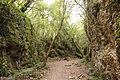 Santoña - trail 6.jpg