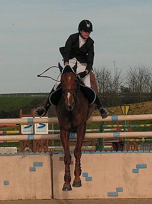 R gle de concours de saut d 39 obstacles wikip dia - Frison saut d obstacle ...