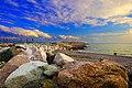 Seascape Newfoundland (40650805044).jpg