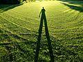 Shadow of photographer on grass.jpg