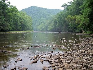 Shavers Fork Monongahela National Forest.jpg