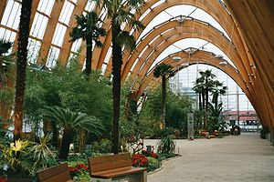 English: Sheffield Winter Gardens, Sheffield, ...