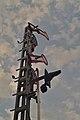 Signal am Bahnhof Stralsund (44122777942).jpg