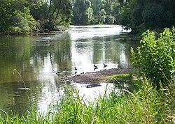 Sim River.jpg