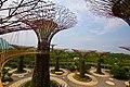 Singapore, Gardens by the bay - panoramio (2).jpg