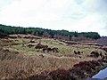 Site of former settlement - geograph.org.uk - 1195913.jpg