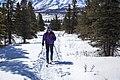 Skiing at Mountain Vista (8641839398).jpg