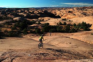 Mountain Bikers on the Slickrock Trail