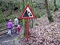 Sloughan Glen - geograph.org.uk - 1176758.jpg