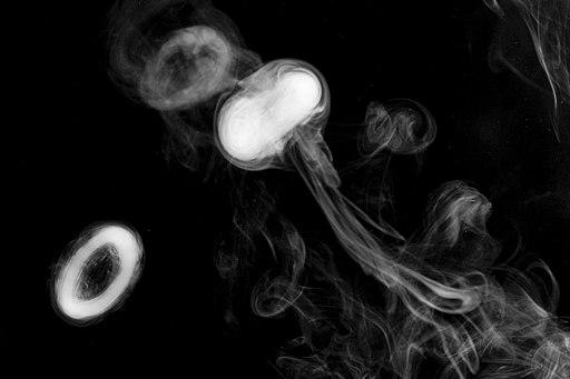 Smoke Rings (4446627539)