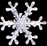 Snowflake7.png