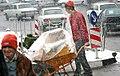 Snowy day of Tehran - 13 January 2007 (20 8510230258 L600).jpg