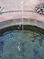 Sortidor d'aigua al jardí botànic de València.JPG