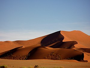 A sand dune in Namibia