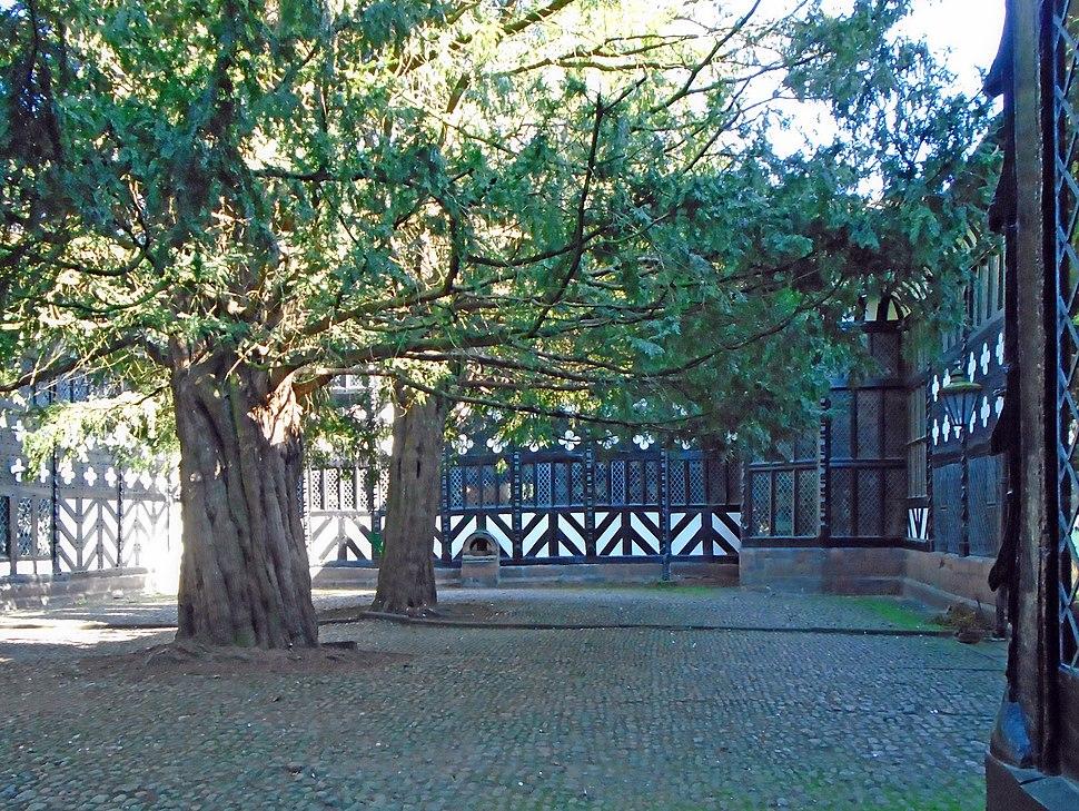 Speke Hall courtyard 5