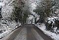 Speldhurst Rd looking east - geograph.org.uk - 1670582.jpg