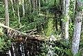 Spulle river (2).jpg