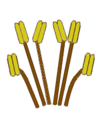 Stamen morphology arrangement tetradynamous.png