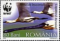 Stamps of Romania, 2006-111.jpg