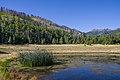 Start of fall color in Lockett Meadow. (29741898316).jpg