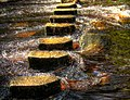 Stepping Stones by The Richardson Fosters.jpg