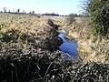 Stream, Peacockstown, Co Meath - geograph.org.uk - 1743821.jpg