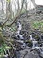 Stream tumbling down the hillside into the Taff, Gwaelod-y-garth - geograph.org.uk - 2329517.jpg