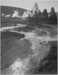 "Stream winding back toward geyser, ""Central Geyser Basin, Yellowstone National Park,"" Wyoming. (Vertical orientation), 1 - NARA - 519991.tif"