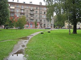 Улица Крупской (Санкт-Петербург) — Википедия