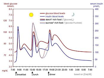 English: idealized curves of human blood gluco...