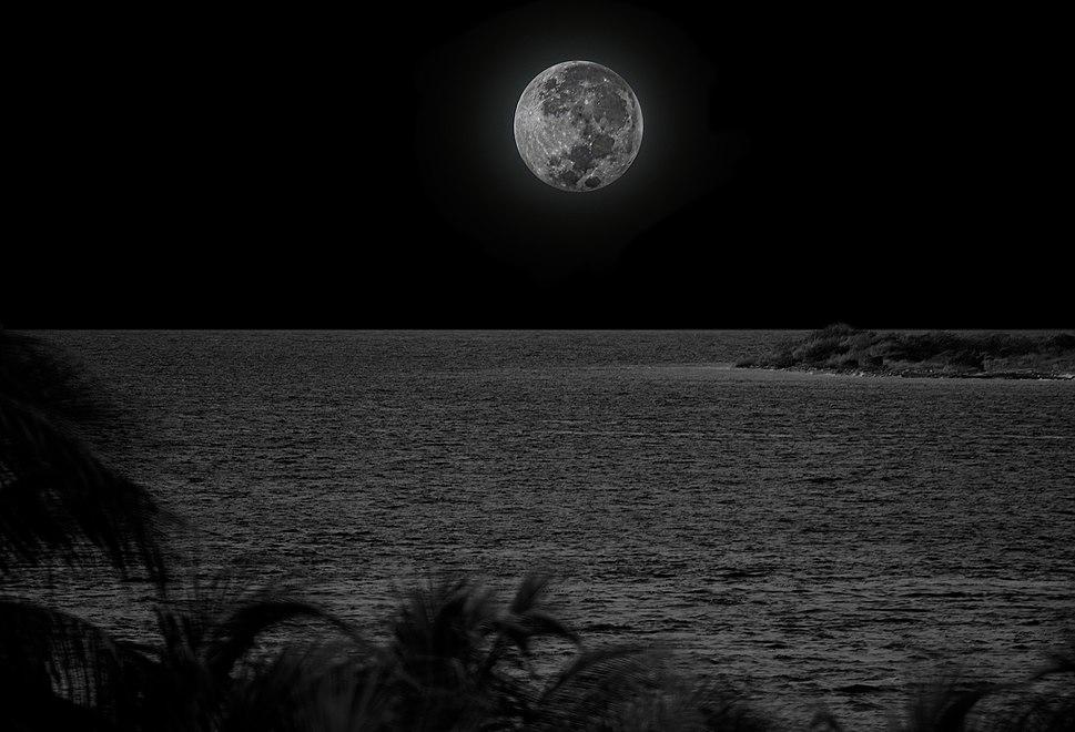 Super Moon 11-15-2016.jpg